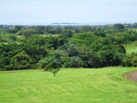 Green field at Equus Village, Pedasi Panama – Best Places In The World To Retire – International Living