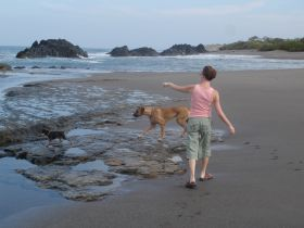 dogs in Nicaragua – Best Places In The World To Retire – International Living