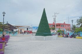 Christmas Tree Ambergris Caye Belize Holidays – Best Places In The World To Retire – International Living