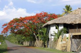 Belize street outside traditional village – Best Places In The World To Retire – International Living