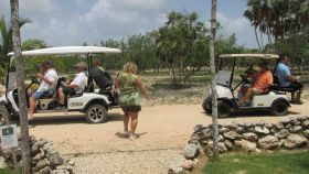 Using golf carts in Belize – Best Places In The World To Retire – International Living