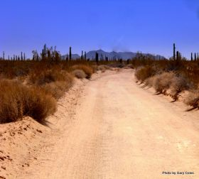 Dirt road in El Pinacate – Best Places In The World To Retire – International Living