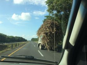 Following sugarcane truck in Veracruz, Mexico – Best Places In The World To Retire – International Living