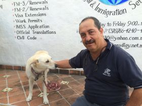 Dr. Memo, the vet in Ajijic – Best Places In The World To Retire – International Living