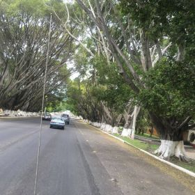 Street with cars in Ajijic – Best Places In The World To Retire – International Living