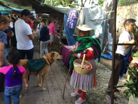 Tuesday Market in Ajijic – Best Places In The World To Retire – International Living