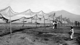 Fishing nets used in Ajijic, Mexico in the 1950s – Best Places In The World To Retire – International Living