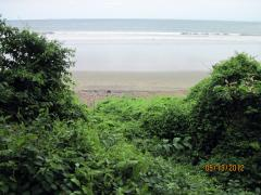 View of Playa Venao Beach from the jungle, near Pedasi, Panama – Best Places In The World To Retire – International Living