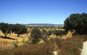 Alentejo, Portugal – Best Places In The World To Retire – International Living