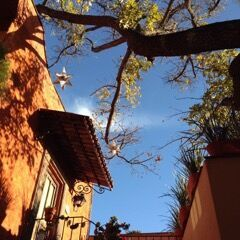 Balcony in San Miguel de Allende, Mexico – Best Places In The World To Retire – International Living