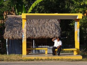 Bus stop with a thatched roof, Yucatan, Mexico – Best Places In The World To Retire – International Living