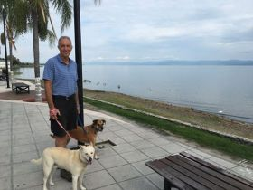 Chuck Bolotin of Best Places walking his dogs on the malecon, Ajijic, Mexico – Best Places In The World To Retire – International Living