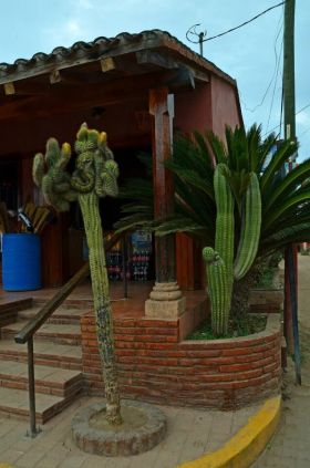 El Quilete, near Mazatlan,  Mexico – Best Places In The World To Retire – International Living