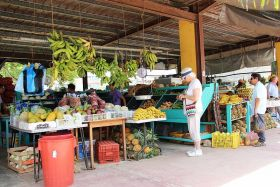 Farmers' market Santa Elena, Cayo District, Belize – Best Places In The World To Retire – International Living