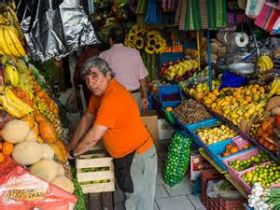 Fruit and vegetable stall in San Miguel de Allende, Mexico – Best Places In The World To Retire – International Living