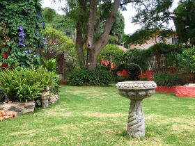 Garden in Ajijic, Mexico – Best Places In The World To Retire – International Living