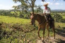 Horesebacker rider in San Ignacio, Belize – Best Places In The World To Retire – International Living