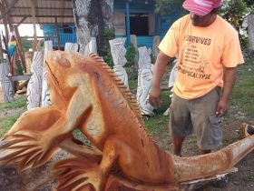 Large carved fish being moved by a Belizean with a t-shirt in English to Vanilla Inn, Cayo, Belize – Best Places In The World To Retire – International Living