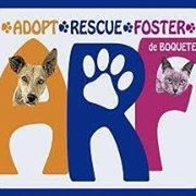 Logo for Adopt Rescue Foster, Boquete, Panama – Best Places In The World To Retire – International Living