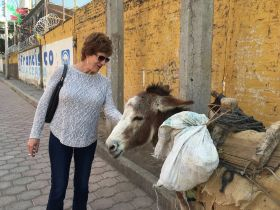 Mary Steele petting a burro in San Juan Cosala, Ajijic, Mexico – Best Places In The World To Retire – International Living