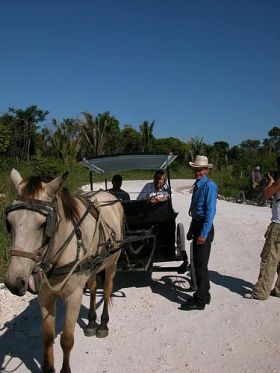 Menonite farmers in Belize – Best Places In The World To Retire – International Living