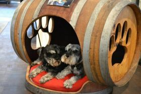 dog crate made from a barrel – Best Places In The World To Retire – International Living