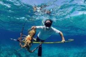 lobster fishing Ambergris Caye – Best Places In The World To Retire – International Living