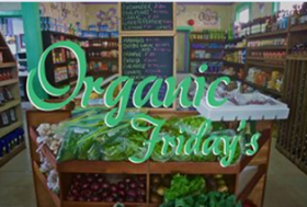 organic friday super gourmet bocas del toro, Panama – Best Places In The World To Retire – International Living