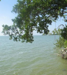 seafront lot Consejo Shores, Belize – Best Places In The World To Retire – International Living