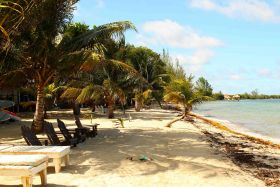 Beach in Belize with chairs and palm trees – Best Places In The World To Retire – International Living