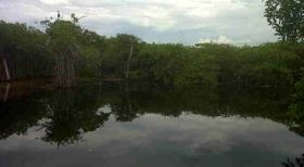 Cenote on land available near Tulum Neach, Yucatan, Mexicoj – Best Places In The World To Retire – International Living