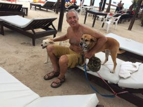 Chuck Bolotin with dogs on chairs at beach in Mahahual, Mexico