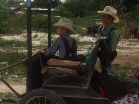 Mennonite boys near Bacalar, Mexico