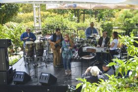 Musicians at Boquete Jazz Festival – Best Places In The World To Retire – International Living