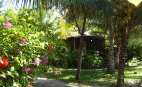 Garden in Placencia, Belize, Captain Jak's – Best Places In The World To Retire – International Living