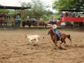 Rodeo in Boquete, Panama – Best Places In The World To Retire – International Living