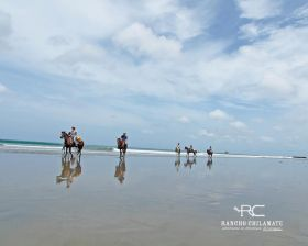 San Juan del Sur horseback riding on the beach in a group – Best Places In The World To Retire – International Living