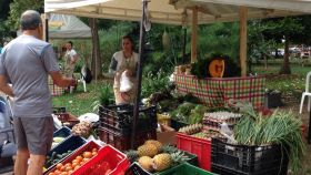 Saturday market, Segundo Parque Laureles, Colombia – Best Places In The World To Retire – International Living