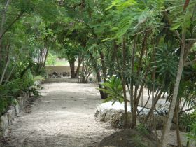 Shaded path in Belize – Best Places In The World To Retire – International Living