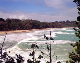 Surf in Bastimentos, Panama – Best Places In The World To Retire – International Living