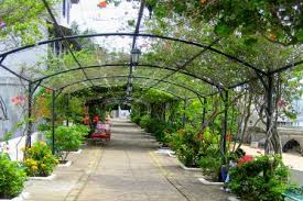 Walkway in Casco Viejo, Panama City Panama – Best Places In The World To Retire – International Living