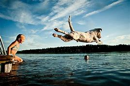 Dog leaping into a lake
