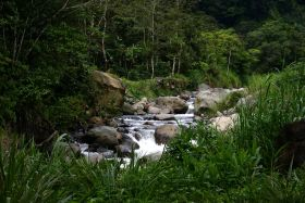Stream in Panama – Best Places In The World To Retire – International Living