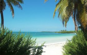 Beach with palm trees on Isla Contoy – Best Places In The World To Retire – International Living