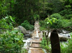 Boquete Panama bridge in the jungle – Best Places In The World To Retire – International Living