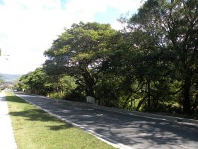 The road into Boquete downthe mountain closer to the village. – Best Places In The World To Retire – International Living