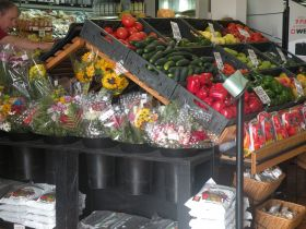 Inside Romero's Grocery Store in Boquete Panama – Best Places In The World To Retire – International Living