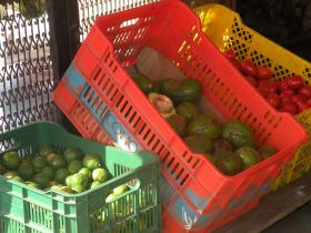 Produce at  vendor near Romero Supermarket in Boquete Panama – Best Places In The World To Retire – International Living