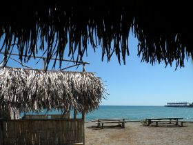 From a small bar next to the bus stop in Puerto Armuelles  – Best Places In The World To Retire – International Living