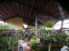 The Farmer's market in Valle de Anton – Best Places In The World To Retire – International Living